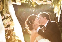 Wedding belles / by Adriana Derrah