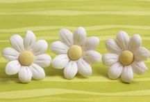 Gumpaste Daisies / Beautiful Sugar Daisies handmade from gumpaste, ready to place on any cake or cupcake.  Just take them out of the box and place them on your wedding cake, birthday cake, or treat.  Perfect cake decorations for beginners & professionals alike. / by CaljavaOnline.com