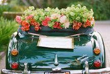 ❤❤ Honeymoon ❤❤ / A chi sta per sposarci, a chi ci sta pensando, a chi sta sognando il matrimonio delle favole...alcuni spunti e destinazioni a cui ispirarsi... #honeymoon #viaggio #nozze #matrimonio / by Volagratis ǀ Voli Low Cost