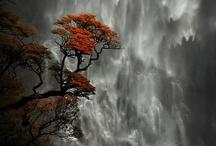 Waterfalls / by Sheryl
