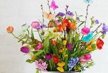 Flower power  / by Anne-Francesca Bossaert for StudioZomooi.nl