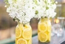 Design - Table Decorations / by StoreSixty Six