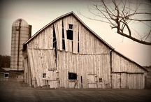 Love Old Barns / by Kim Rogers Ethell