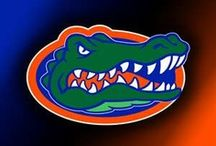 Go Gators! / by Lynda Burch