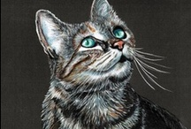 The Purr-fect Meow / by Fran Klaas
