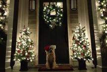 Holiday - Christmas / by Gwynne Zink