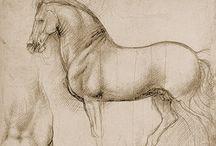 Leonardo Da Vinci / by Marta H