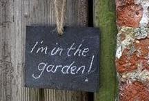 garden / by Summer