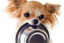 Pet Foods We Love ♥ / Find top pet food brands at prices you'll love! Visit www.petcarerx.com! / by PetCareRx