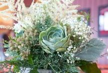 Floral Centerpieces / by Angie Raj