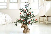 christmas/winter / by Ramona Iordan