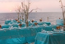 Wedding Ideas / by Courtney Fromberg