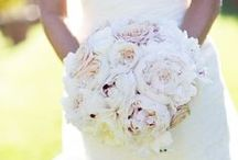 Wedding  / by Sydney Smith