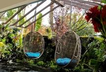 outdoor living / by Fran Patrinicola Maddalena