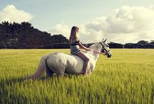 "Ride the Sky / ""To ride a horse is to ride the sky."" – Unknown / by Grace Anne Vergara"
