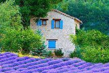 dreaming....Provence... / Provence / by Tiziana Calafato