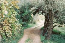 Path Less Traveled / by Entouriste