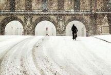 Winter White / by Entouriste