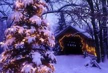 Winter / by Andrea Peterson Ludtke