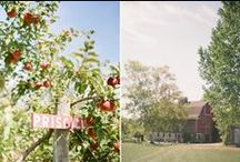 Orchard/Berry Farms / by Bayfield WI