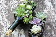 DIY Recycled Wine Crafts / by The Seeker Wines