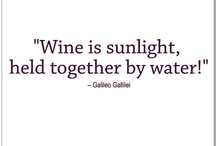 Wine Wisdom / by The Seeker Wines