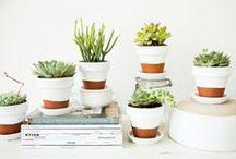 Crafts & DIY / by Samantha Melanson