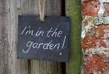 You Can Find Me In The Garden / by Kimberly Gilbert