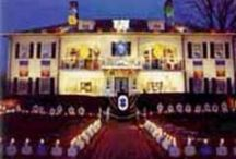 Holidays and Special Events / by Lorriedel Ben David