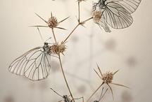 Creatures / by Victoria O'Brien
