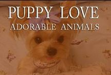 Puppy Love / by Inviting Home