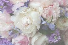 Jardins et fleurs / by Nancy Cristler