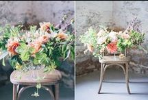 A R R A N G E D / florals beautifully arranged  / by S.Marie Zins