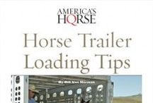Horse E-Books / Do you need a refresher on how to tie your horse's lead rope? What about that horse who's nervous about loading into the horse trailer? Are you wondering which horse health issues are the most common? No worries, America's Horse Daily (americashorsedaily.com) is here to help! With several helpful e-books in a variety of topics, you can rest assured that your not alone in your horse ownership experiences.  / by American Quarter Horse Association (AQHA)
