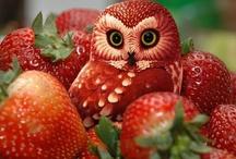 Owls, Owls, Owls! Hootalicous! / by Judine Pottmeyer