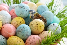 Easter / I love decorating for the Holidays.  Easter is always a Holiday I struggle with.  I am always so thankful to find some interesting and clever ideas. / by Judine Pottmeyer