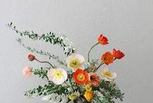 floristry / by Matilda .
