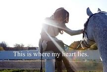 Love it! / by Krista Bramon