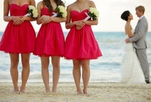 Wedding Picture Ideas / by Meredith Bassford