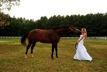 Horses & Weddings / by ilovehorses.net