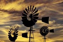 Water & Windmills / by Vicky Logan