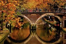 Bridges / by Vicky Logan