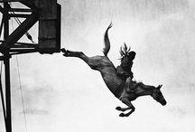Nostalgium / by Alika Crosby