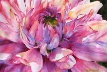 watercolor-florals / by Carol Oberg Riley