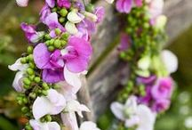 Wreaths / by onespeckledhen ...