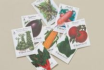 Graphics: Vintage Seed Packets / . / by Julia Vaughn Black