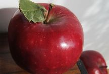 Apple Appeal / by Patti Mitchell