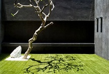Gardens / by Filomena Trindade