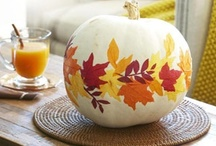 Fall Harvest. / Inspiration for my favorite season! / by CoffeeCole