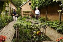 Gardening & Landscaping / by Anna Wilson